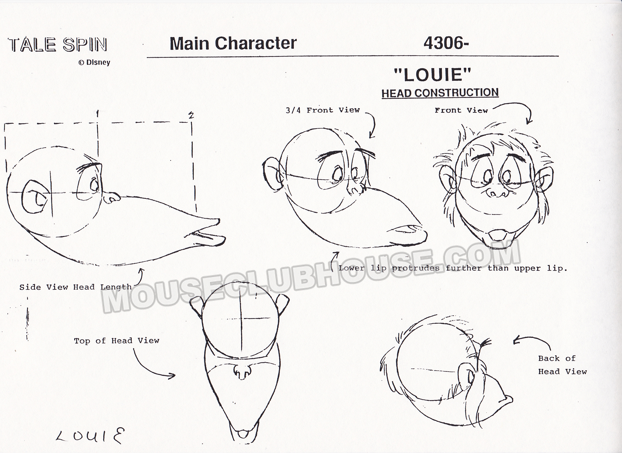 Head construction of Louie